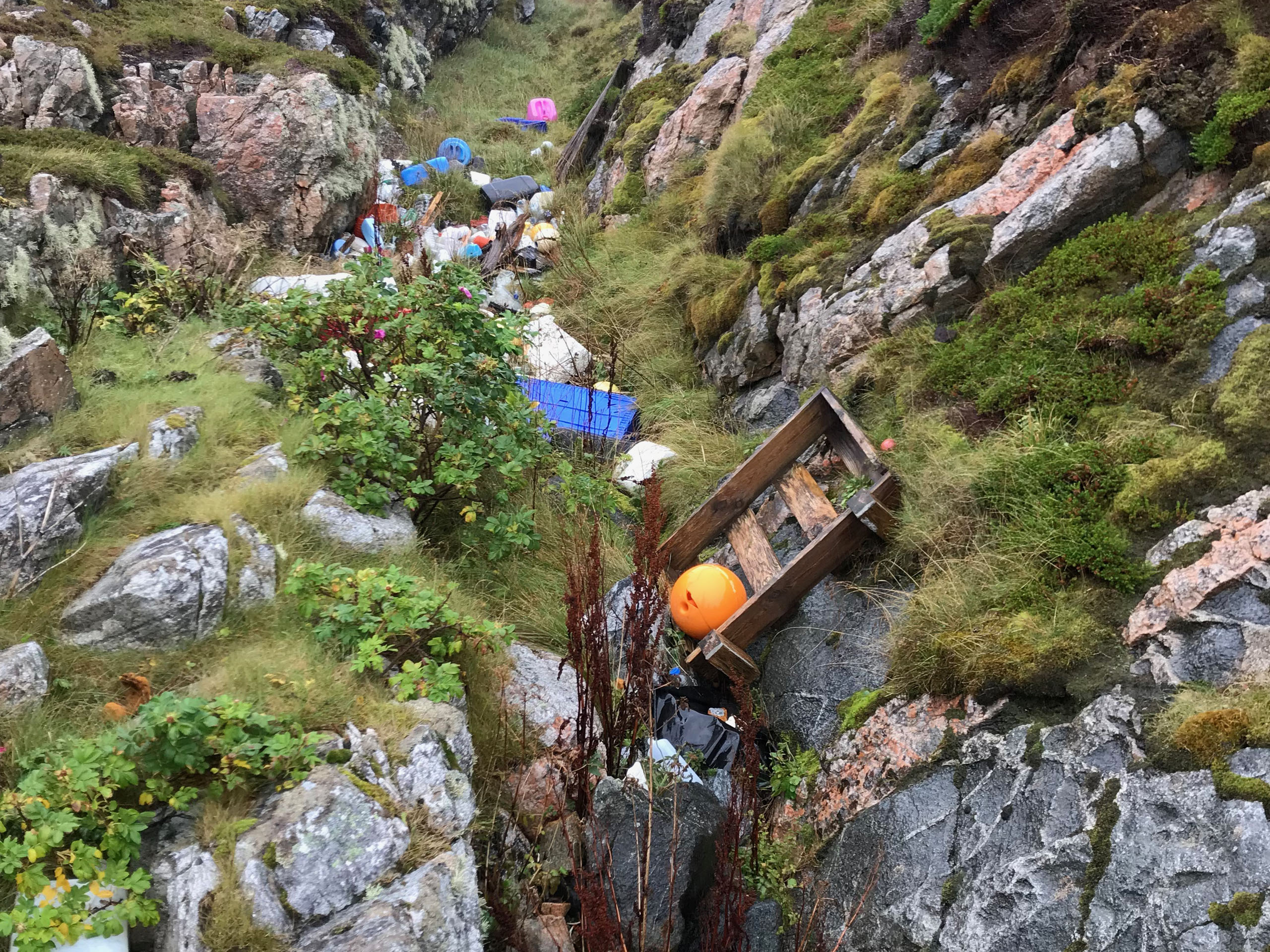 Rydd Norge Møre og Romsdal